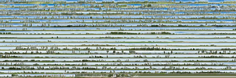 South Gippsland Highway, 2020. Photograph, pigment inkjet print, 20x60